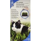 Catit Cat Grass  50128