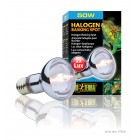 Exo Terra SUN Glo/ Halogen Basking Spot  Lamp 50W - PT 2181