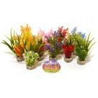Nano fiesta flower 380091