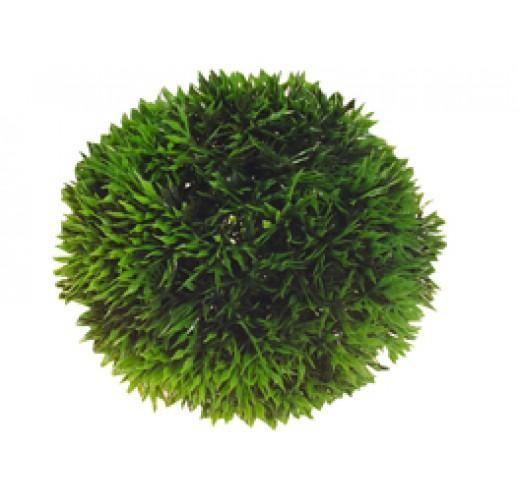 Plastic aquatic plant 6.5 cm.
